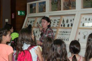 Лятна програма за още знания в Националния природонаучен музей