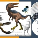 """Остани си вкъщи & гледай наука! (видео) Владимир Николов – """"Динозаврите — еволюция, биология и изчезване"""""""