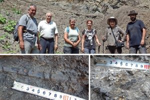 Палеонтолози откриха нови останки от динозаври в находището край Трън (снимки)