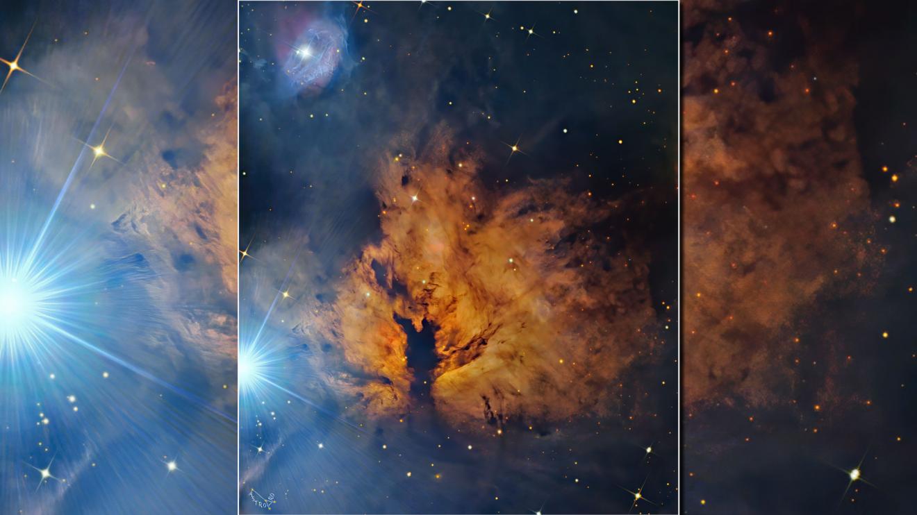 Алнитак и мъглявината Пламък (Астрономическа снимка на деня – APOD)