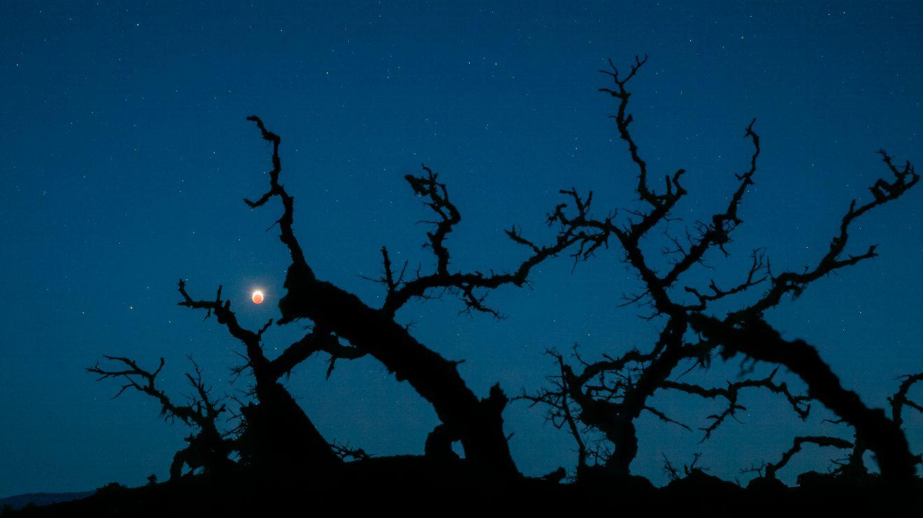 Кървава чудовищна Луна (Астрономическа снимка на деня – APOD)