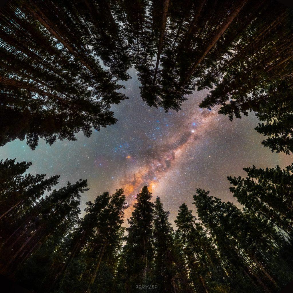Ограден от дървета: Прозорец към Галактиката (Астрономическа снимка на деня – APOD)