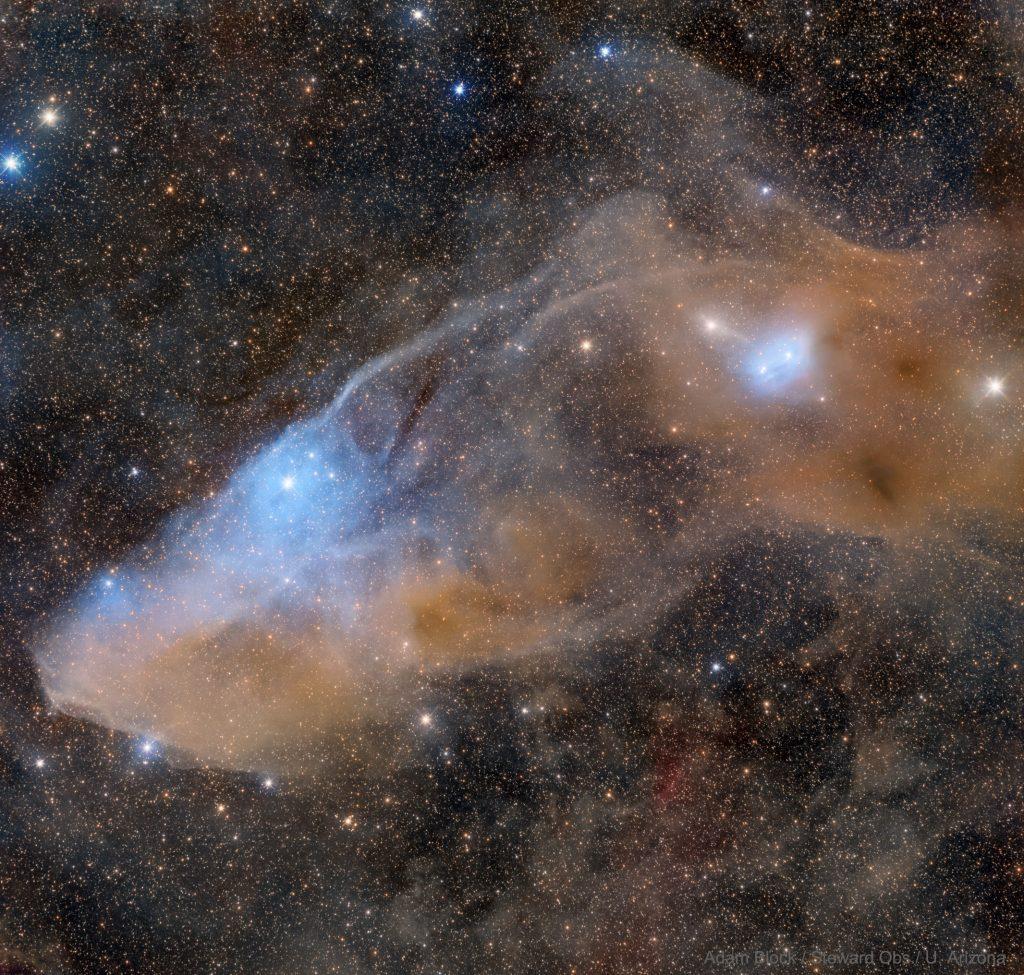 IC 4592: Синята отражателна мъглявина Конска глава (Астрономическа снимка на деня – APOD)