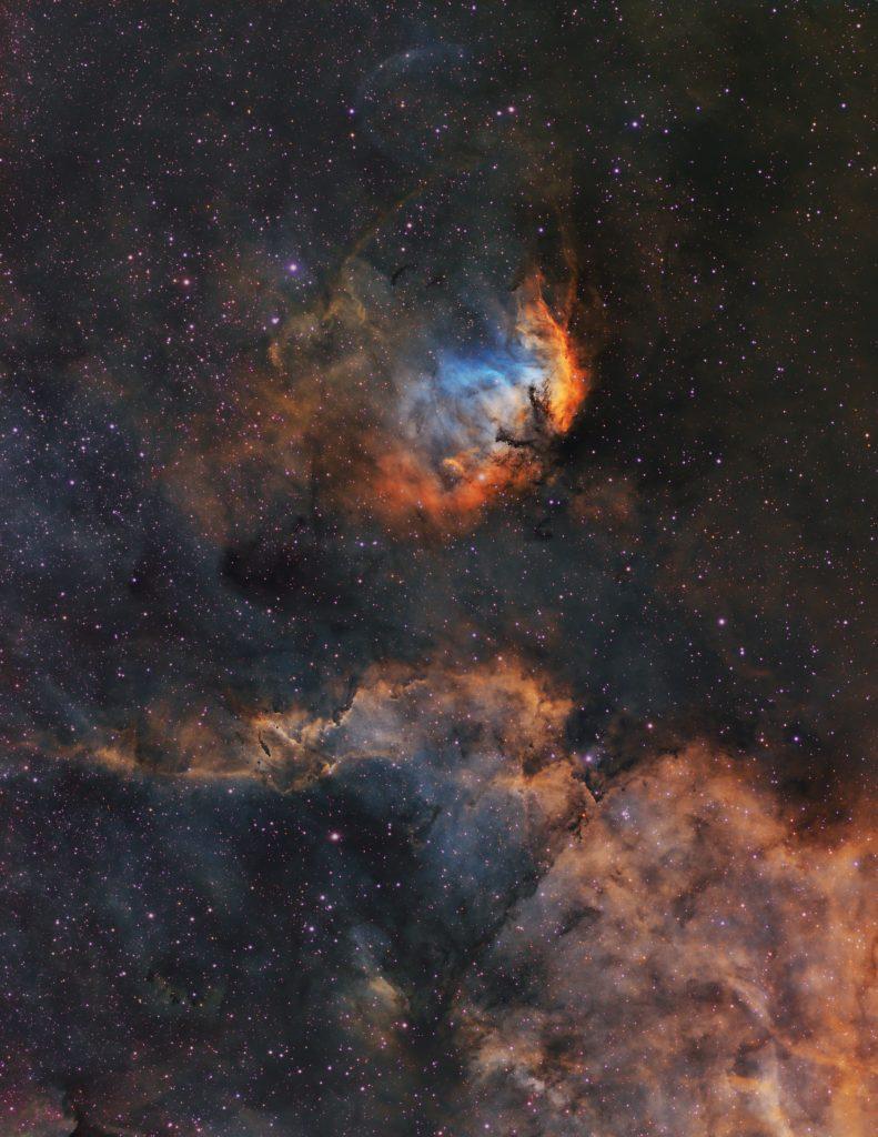 Лалето и Лебед Х-1 (Астрономическа снимка на деня – APOD)